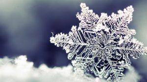 snöflinga